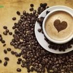 مصرف قهوه بیش از حد موجب مرگ زود رس میشود.