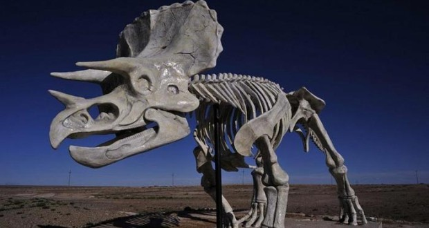 خانه دایناسورها نام صحرایی است در کشور چین