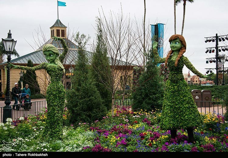 گزارش تصویری از باغ گل ایپکات در فلوریدا