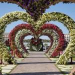 باغ گل میراکل دبی بزرگترین باغ گل جهان