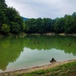 سفری به دریاچه چورت یا دریاچه میانشه در استان مازندران