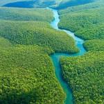 رودخانه آمازون به روایت تصویر