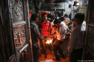 معبد عجیب موشها در هند با ۲۰ هزار موش