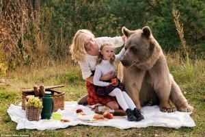 خرس گریزلی