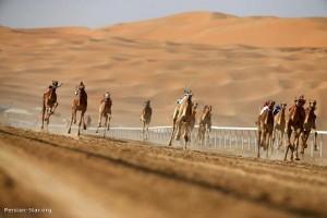 فستیوال اعراب خلیج فارس در بیابانهای دبی