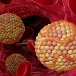 کاهش کسترول بد خون با مواد غذایی