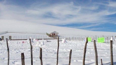 جشنواره زمستانی آدم برفیها سوباتان