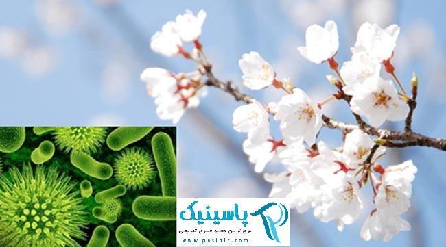 شایع ترین بیماری های ویروسی در بهار