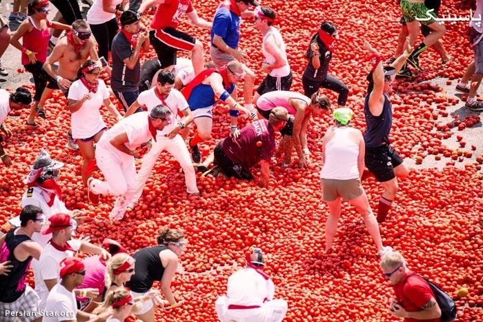 فستیوال توماتینا /جشنواره جنگ با گوجه فرنگی