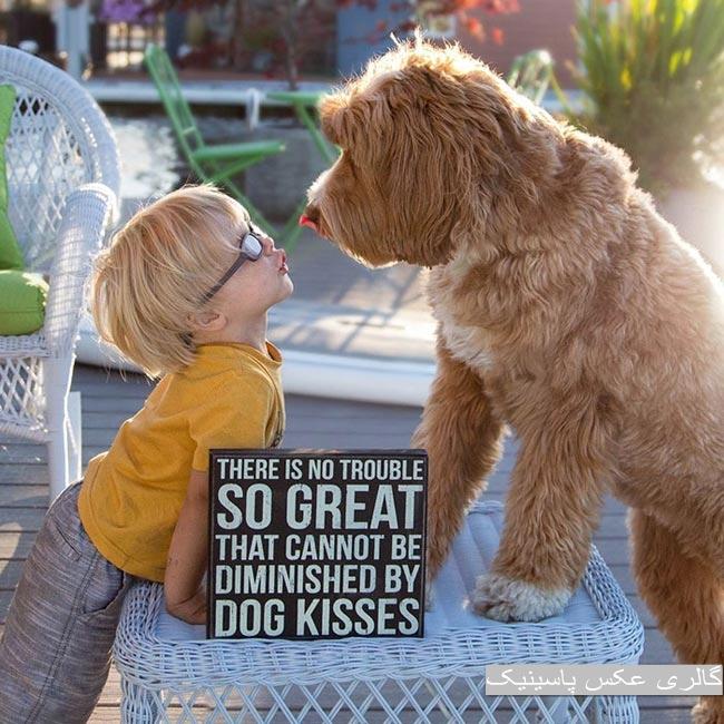 رابطه احساسی عمیق بین یک کودک و سگش