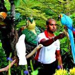 عجایب جنگل های آمازون