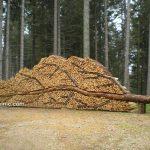 آثار هنری بسیار زیبا با هیزم و چوب