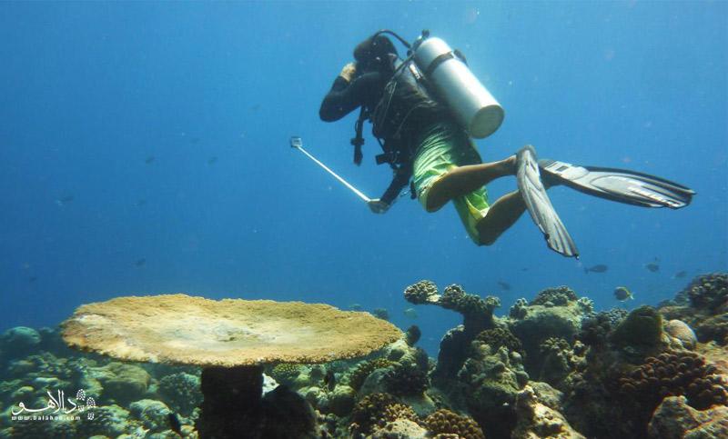راهنمای سفر به مالدیو