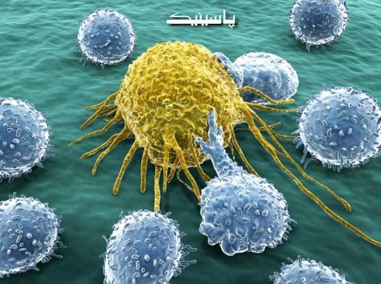 آیا شانص یکی از عوامل بروز سرطان است؟