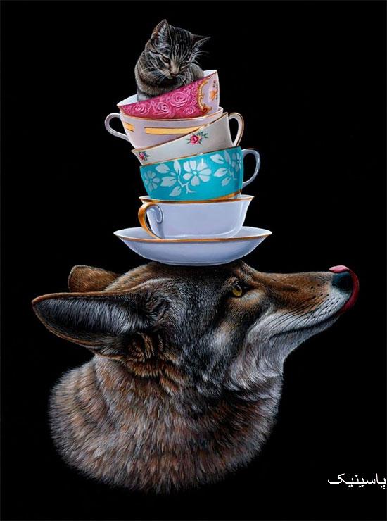 تصویرسازی های زیبا از حیوانات