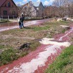 جاری شدن سیل آبمیوه در خیبانهای شهر لبدیان روسیه