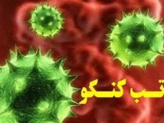 علائم تب کریمه کنگو و نحوه پیشگیری از تب کریمه