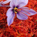 روش تشخیص زعفران اصل از تقــلبی