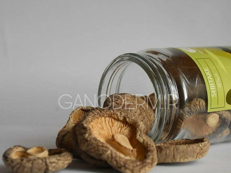 فوایدغذایی و دارویی قارچ شیتاکه و گانودرما